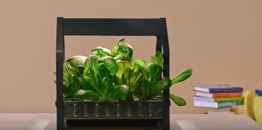 ikea lance un kit pour faire du jardinage l 39 int rieur cr ative pub marketing. Black Bedroom Furniture Sets. Home Design Ideas